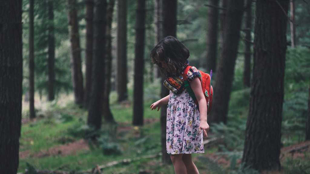 os-nenos-do-bosque
